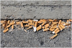 Typical cigarette but litter in the gutter