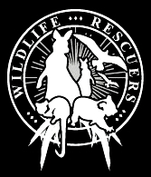 Wildlife Rescuers is a voluntary organisation that relies on donations and merchandising sales for fundraising