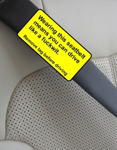 Seatbelts encourage dangerous driving..