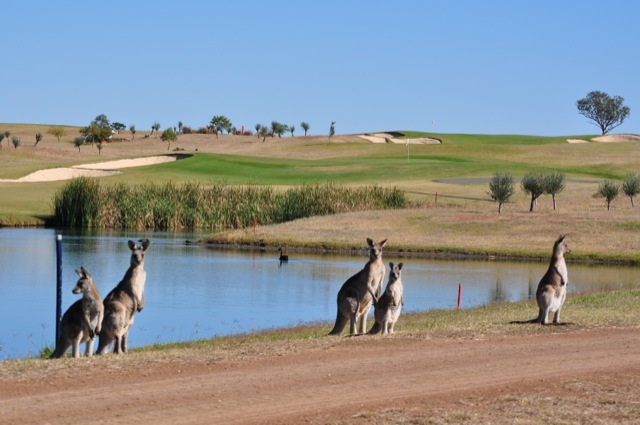 Wildlife and Waterways - Just two of the reasons why Longyard Golf Club uses No BuTTs Eco-Pole Free Standing/Bollard Ashtrays